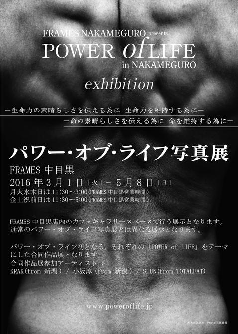 160301 POWER of LIFE in NAKAMEGURO FLYER.jpg